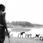 Hamar Boy watches for crocodiles on the Omo River