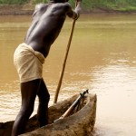 Kwegu boatman 2 - colour