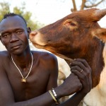 Ker Gano, Mursi Chief with cow - Colour