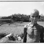 Java Farmer