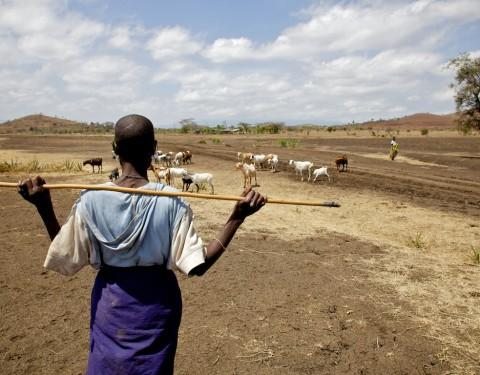 Life & Landscape – Tanzania
