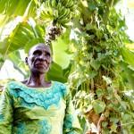 Farmer - Bungoma, Kenya