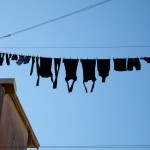 Every washing line tells the world a story about the unseen inhabitants of Venice.