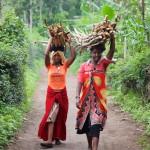 Firewood Girls, Olmotonyi, Tanzania