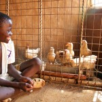 Kennedy Omondi with his chickens, Siaya