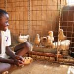 Kennedy Omondi with his chickens, Siaya
